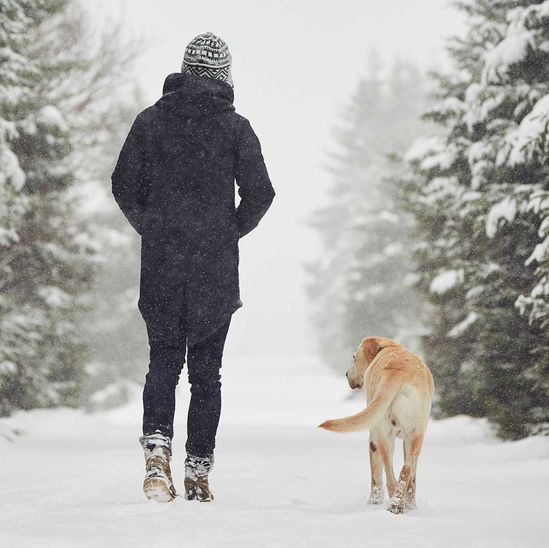 Person walking with dog in the snow